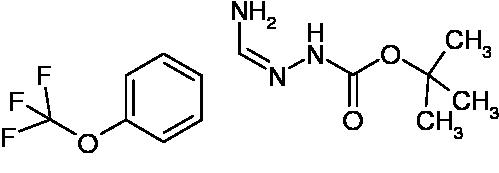 N'-[1-Amino-1-(4-(trifluoromethoxy)phenyl)methylidene]hydrazinecarboxylic acid tert-butyl ester