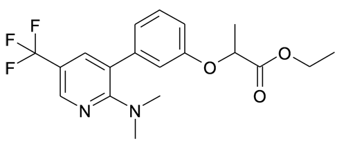 2-[3-(2-Dimethylamino-5-trifluoromethyl-pyridin-3-yl)-phenoxy]-propionic acid ethyl ester