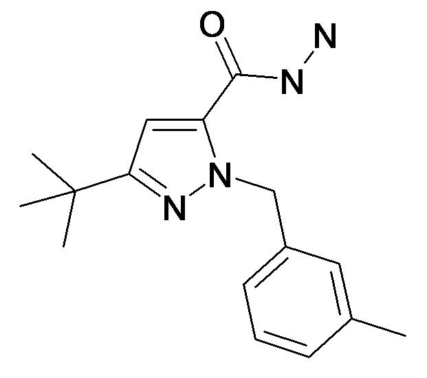 5-tert-Butyl-2-(3-methyl-benzyl)-2H-pyrazole-3-carboxylic acid hydrazide