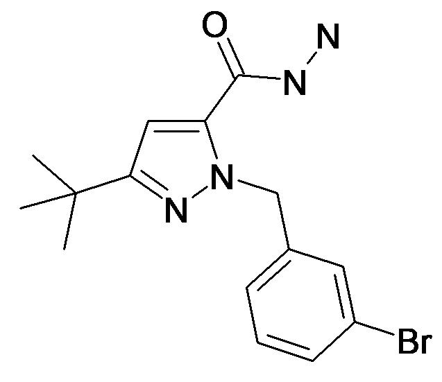 2-(3-Bromo-benzyl)-5-tert-butyl-2H-pyrazole-3-carboxylic acid hydrazide