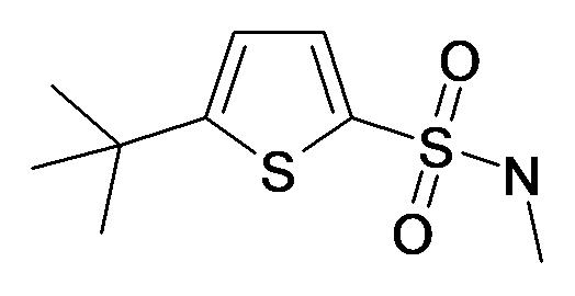 5-tert-Butyl-thiophene-2-sulfonic acid methylamide