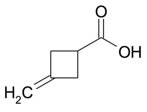 3-Methylenecyclobutanecarboxylic acid